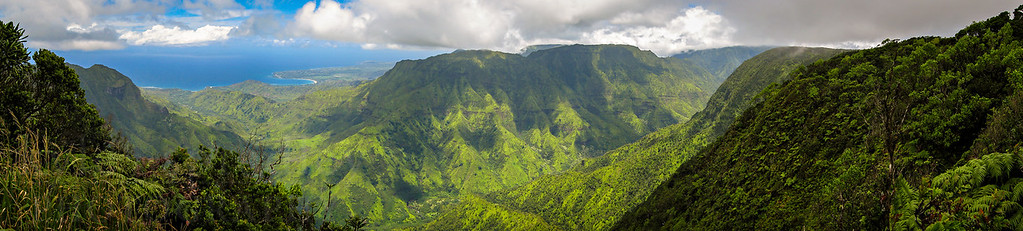 View of Kilohana Mountain from the Pihea Ridgeline Trail on the island of Kauai.  Photo by Kyle Spradley | www.kspradleyphoto.com