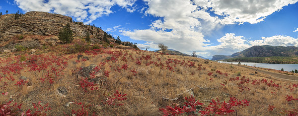 Vaseux Sumac Panoramic
