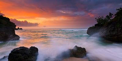 Bali Vibes