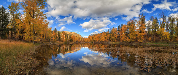 Twin Lakes Autumnal Panoramic I