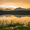 V Lake Gold