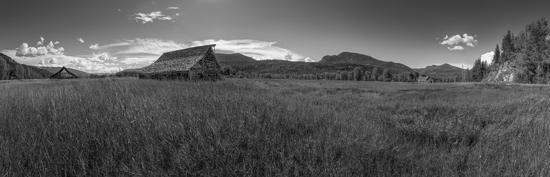 The Homestead  180 bw