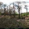 IMG_6386 Panorama