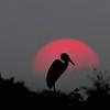 Sunset near Araras Lodge