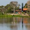Jabiru Stork Flying at Pantanal Lodge