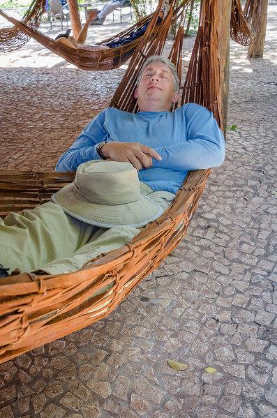 Jeff Taking an Afternoon Siesta