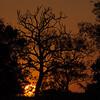 Sunset on Mato Grosso do Sul