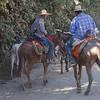 Pantaneiros (Cowboys)