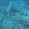 (c) Kalei Nuuhiwa<br /> Kuaihelani