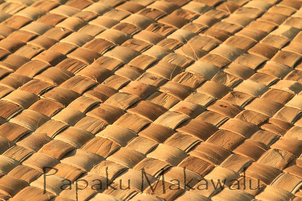 (c) Kalei Nuuhiwa 2011<br /> Moena Lauhala