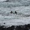 Diving.Kona<br /> (c) Pualani Kanahele