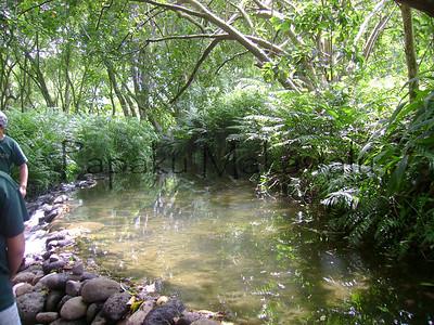 Mahiai / Irrigation
