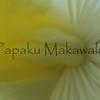 Maiopilo.Kona<br /> (c) Pualani Kanahele