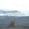 Ahinahina.Mauna Kea<br /> (c) Kuulei Kanahele