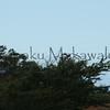Pueo.Kuamoo Road<br /> (c) Kalei Nuuhiwa