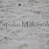 Moli_footprints<br /> (c) Kalei Nuuhiwa