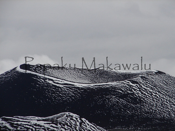 Puu Mahoe <br /> (c) Ahiena Kanahele