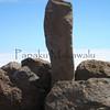 Uprights<br /> (c) Kuulei Kanahele