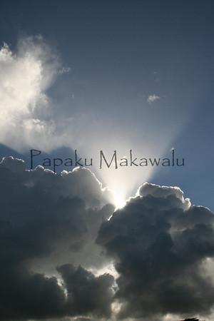 .Panaewa<br /> (c) Pualani Kanahele