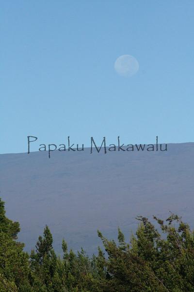Laaukukahi.Kilauea<br /> (c) Kalei Nuuhiwa