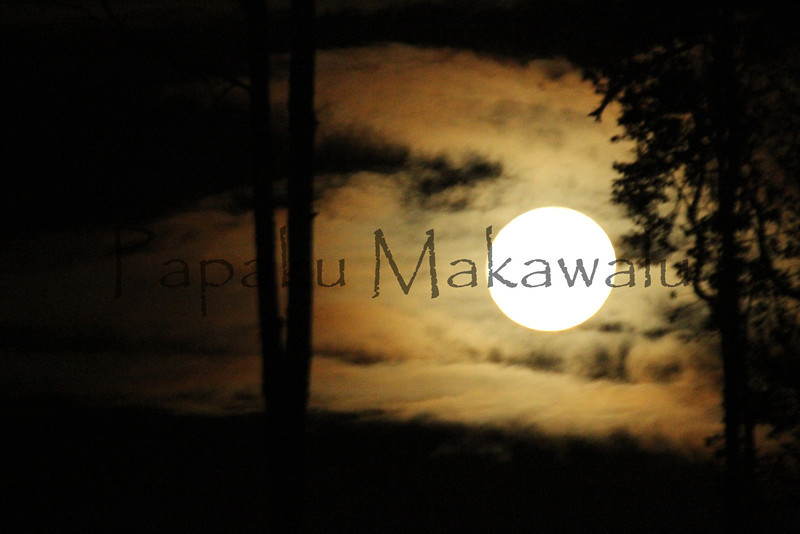 Hoku Setting<br /> (c) Kalei Nuuhiwa