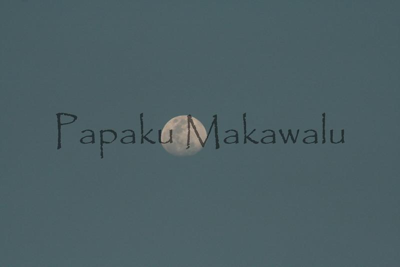 (c) Pualani Kanahele