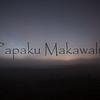 (c) Kalei Nuuhiwa 2012 Noe. Puu Huluhulu