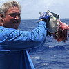 what's left of second catch<br /> Summer Solstice<br /> 6.21.07<br /> Morning outside of Nihoa<br /> (c) Kalei Nuuhiwa