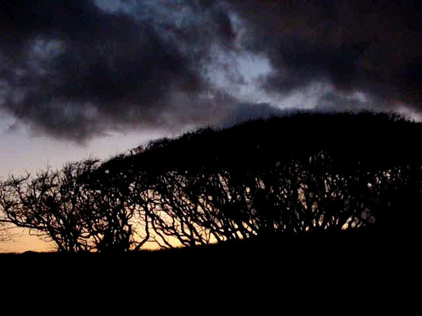 Winter solstice <br /> Site 101 sunrise<br /> (c) Kalei Nuuhiwa