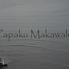 Kaipalaoa<br /> (c) Kuulei Kanahele