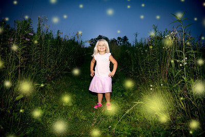 3 Fireflies i17s 7-17  (10)
