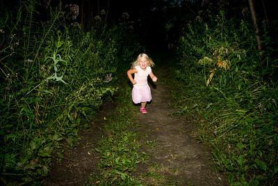 3 Fireflies i17s 7-17  (7)