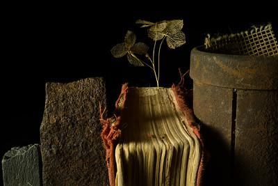 Book, Slate, Steel, Hydrangea & Gauze