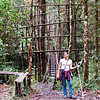 A simple wooden bridge in the forest. That is Aimee in the foreground, someone very special to me. We were on a hike in the Tari Highlands. Papua New Guinea