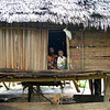 Family with their pet cockatoo. Paru village on the April River near Sio, Upper Sepik River region.