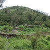 Approaching another Dani village while on trek in the Baliem Valley