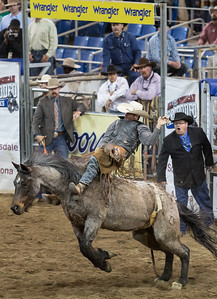 Parada del Sol Rodeo Scottsdale Arizona 2 March 2014 025
