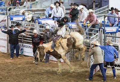 Parada del Sol Rodeo Scottsdale Arizona 2 March 2014 013
