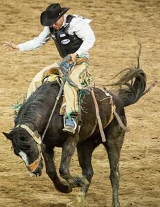 Parada del Sol Rodeo Scottsdale Arizona 2 March 2014 041