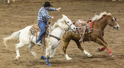 Parada del Sol Rodeo Scottsdale Arizona 2 March 2014 028