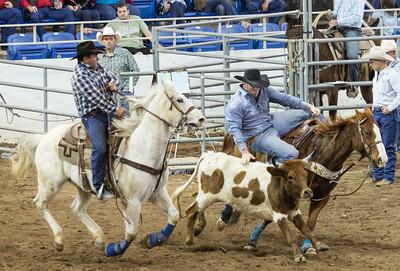 Parada del Sol Rodeo Scottsdale Arizona 2 March 2014 035
