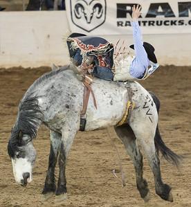 Parada del Sol Rodeo Scottsdale Arizona 2 March 2014 017