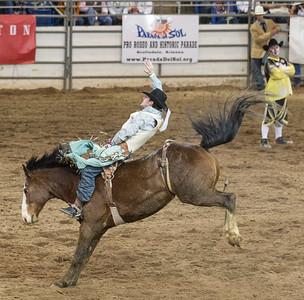 Parada del Sol Rodeo Scottsdale Arizona 2 March 2014 009