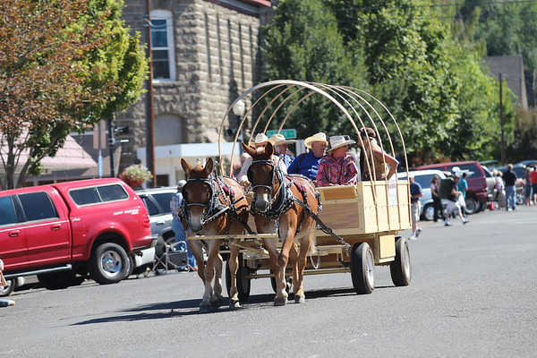 2013 Hells Canyon  Mule Days Parade