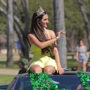2015 St Patrick's Day Parade - San Diego
