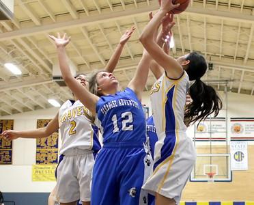 Girls Basketball vs. Hamilton  1/6/2016