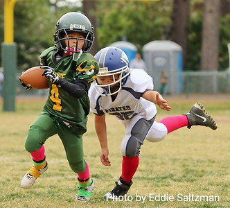 Jr. Peewee's vs. Willows 10/21/2017