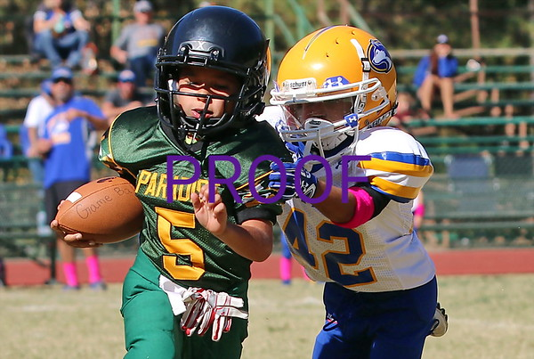 Mighty Mites vs. Sutter  9/30/2017