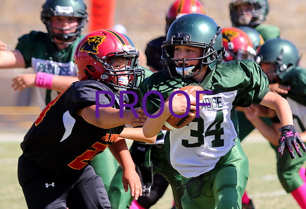Peewee's vs. Chico Panthers  10/7/2017
