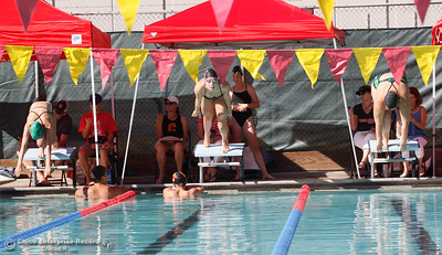 Paradise at Chico High School Swimming September 21, 2016 at Bidwell Junior High School in Chico, Calif. (Emily Bertolino -- Enterprise-Record)